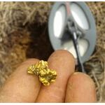 металлоискатель для поиска золота